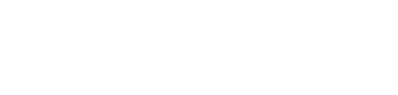 The Eagle View Technology  Text